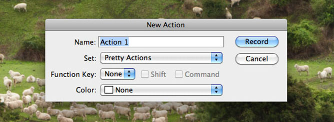New Action Dialog Window