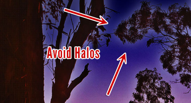 Avoid Halos When Feathering Edges In Photoshop