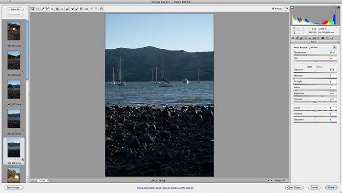 Adobe Photoshop Camera Raw Plugin