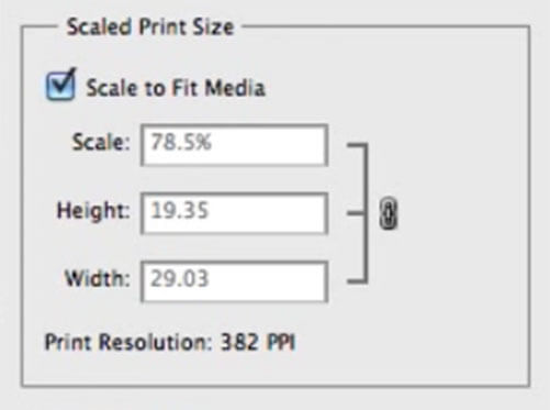 Scale Print Size
