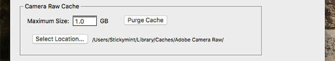 Adobe Camera Raw Preferences - Cache